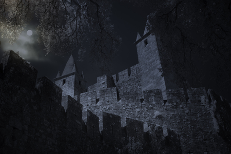 Mysterious medieval castle in full moon night