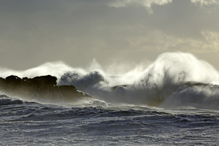 Soft backlit stormy sea wave splash and spray at sunset