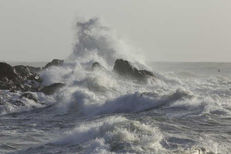 Big wave covering rocks from the northern portuguese coast.