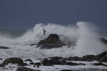 Big stormy waves breaking in the middle of cliffs and rocks. Stock fotó