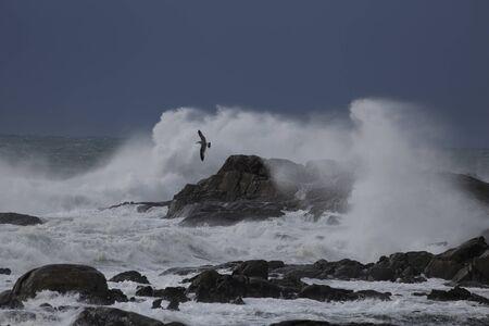 De grosses vagues orageuses se brisent au milieu des falaises et des rochers. Banque d'images