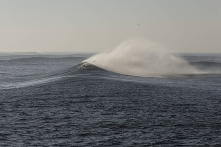 Big ocean spraying wave