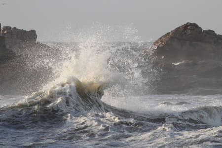 Interesting beautiful sea wave splash