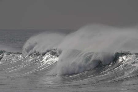 Windy long sea wave with spray Archivio Fotografico