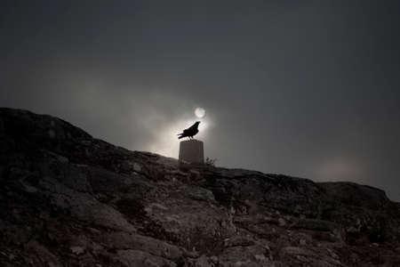 Crow over a geodesic mark against an overcast full moon night sky