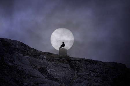Crow over a geodesic mark against an overcast full moon sky Archivio Fotografico