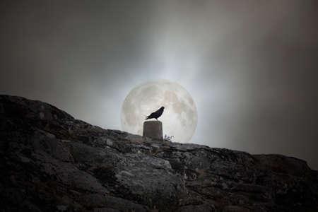 Crow over a geodetic landmarkmark against an overcast full moon sky