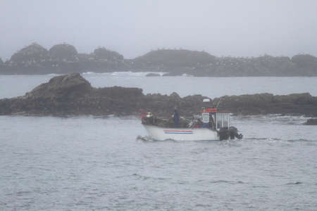 Small fishing boat working on a misty morning. Northern portuguese rocky coast. Archivio Fotografico