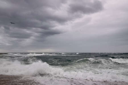 Northern portuguese beach with waves and dark cloudy sky
