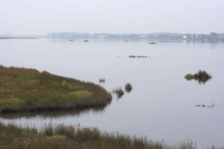 Beautiful Ria de Aveiro, brackish water lagoon, with a very rich natural life, kind of portuguese wetlands.