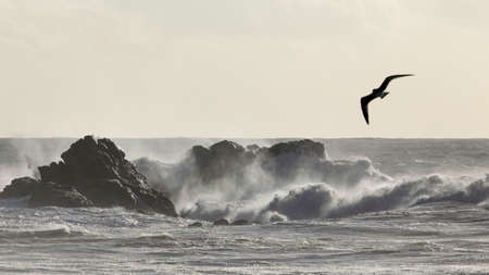 Big stormy sea waves breaking over rocks Archivio Fotografico
