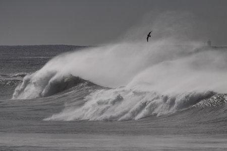 Big breaking wave with wind spray. Near Leixoes harbor north wall, Portugal. Archivio Fotografico