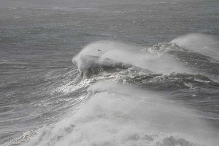 Big crashing stormy wave with wind spray. Northern Portuguese coast.