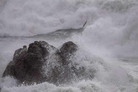 Sea rocks in a rough sea day