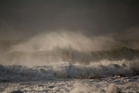 Breaking wave with wind spray. Northern portuguese coast during winter.