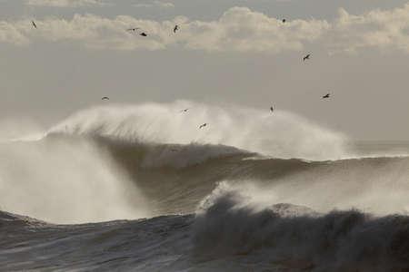 Big stormy waves with wind spray. Archivio Fotografico