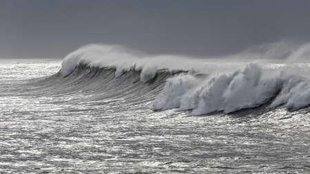 Beautiful big white wave in a glistenin sea.