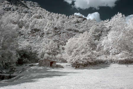 Infrared mountain hit. Peneda Gers National Park, north of Portugal.
