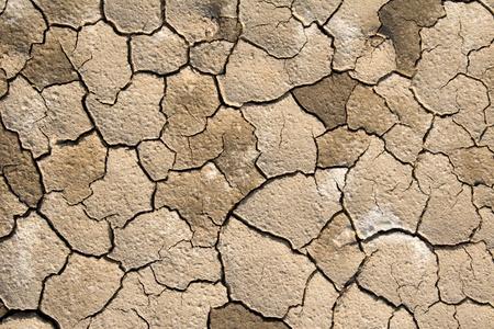 Dried Soil Stock Photo - 12806323
