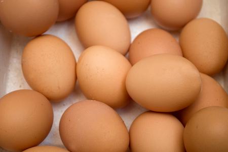 dozens: Dozens of eggs in a carton, Novi Sad, Serbia