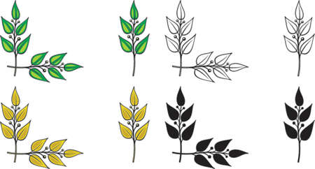 laurel leaf: Set of vector design elements. Corner ornament - Laurel branches. This is a vector image - you can simply edit colors and shapes. Illustration