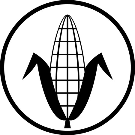 Ear of corn vector icon Çizim