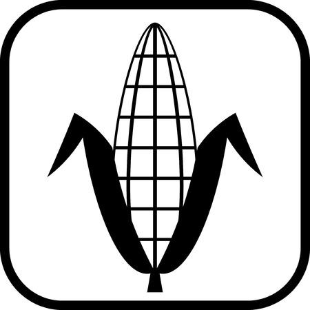 Mazorca de maíz del icono del vector