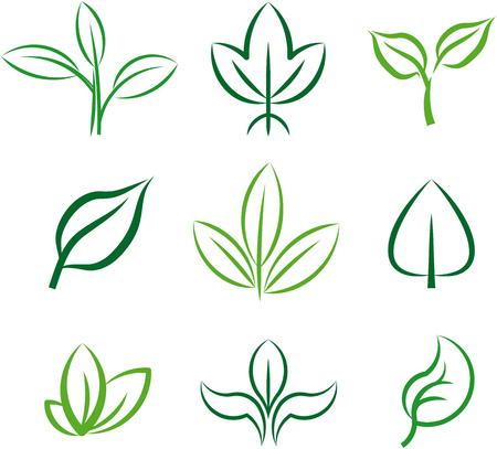 녹색 식물과 나뭇잎. 벡터 일러스트 레이 션