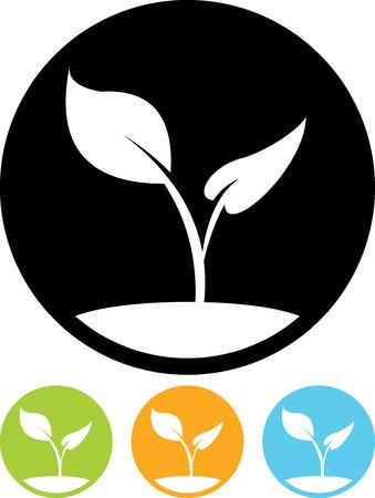 식물 새싹 - 절연 벡터 아이콘 일러스트