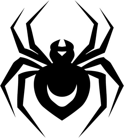 Spider vector illustration isolated