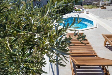 Holzliegestuhl in der Nähe des Pools im Olivengarten in der Nähe von Luxuswohnungen auf der Insel Brac in Kroatien