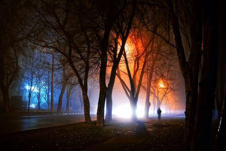 夜のストレンジャー 写真素材