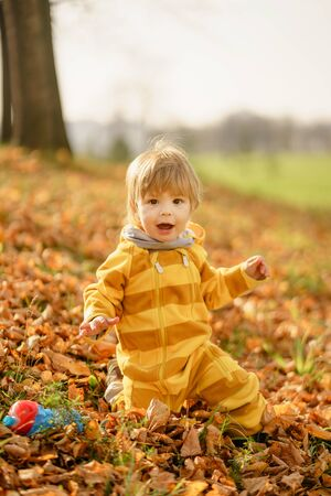Concept: family, kids. Happy little child, baby boy laughing and playing in the autumn on the nature walk outdoors at park