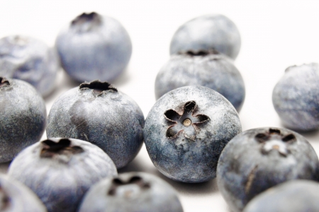 Blueberries - white background