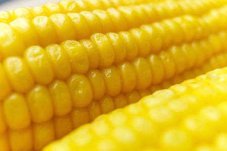 Corn dettagli cob - vista macro Archivio Fotografico - 48582581