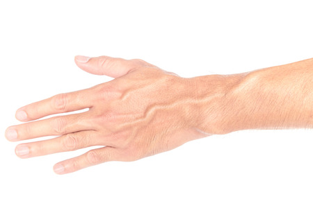 hand care: Man back hand with blood veins on white background, Health care and medical concept