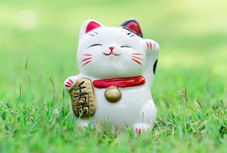 Maneki neko on green grass with sun light in the morning, select focus