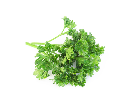 Parsley vegetable isolated on white background