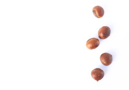 Closeup horse chestnuts isolated on white background, healthy food concept