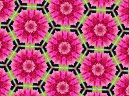 cotton: Pattern design