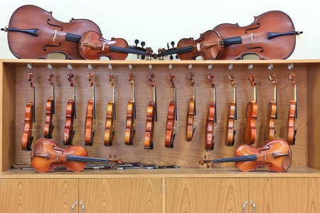 violin family Stock Photo - 14646770