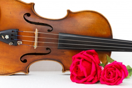 The violin and roses Stock Photo - 14646744