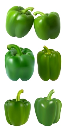 Gradient Mesh Vector Illustration of a Photo Realistic Green Paprika
