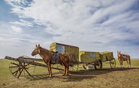 Vintage horse carriage at the Mongolian steep
