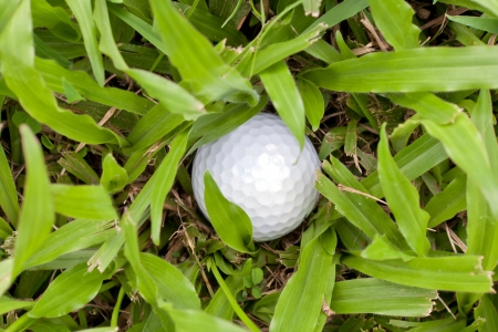 White golf ball drop in heavy rough, concept for difficult trouble photo