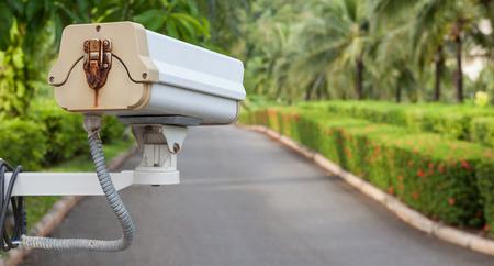Security camera, CCTV hangs in garden for surveillance photo