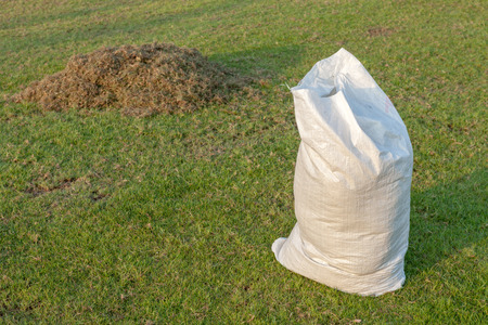 Gardening, a pile of dry grass at field with cut grass in white sack