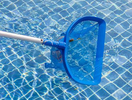 blue skimmer on swimming pool Фото со стока