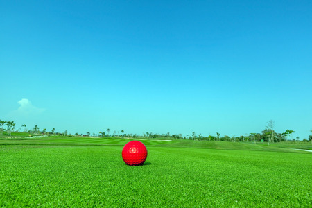 contrasting: Contrasting of red demo golf ball and green golf course background. Stock Photo