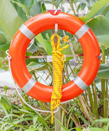 hanging around: The orange life buoy is hanging around the swimming pool and green tree background, safety and rescue concept.